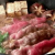【査定チャレンジ】高級すき焼き肉当選者発表